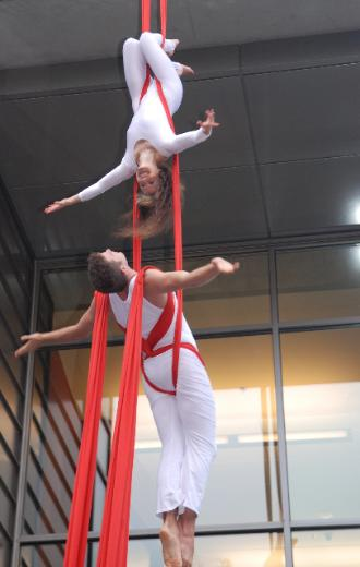 The Circus Aerials Society Performers at The Dr Peter AIDS Fundraiser Passions