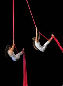 Aerial Silks Duet Circus Performers photo by Dave Clendenan at Scotia Dance