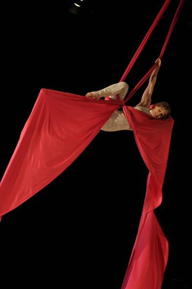 aerial silks instructor training manuals pdf